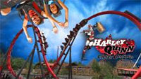 Harley Quinn Crazy Coaster at Six Flags Discovery Kingdom