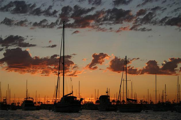 Newport Harbor at sunset