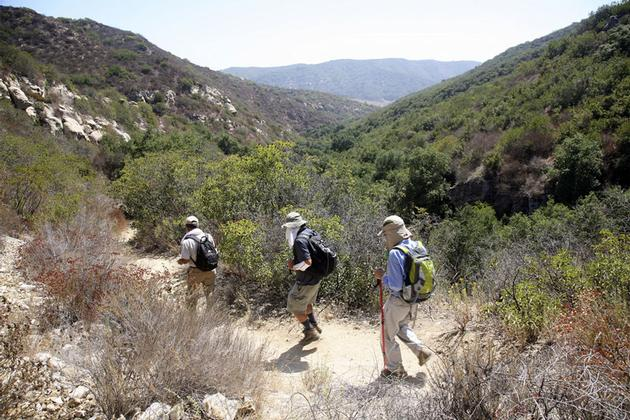 Hiking in Laguna Coast Wilderness Park