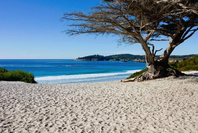 Carmel-By-The-Sea Convention and Visitors Bureau